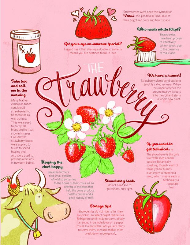 18 The Last Bite BEdlund Strawberry RenoTahoe