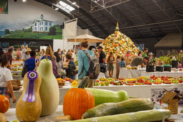 13 HeirloomExpo Displays Flower Hall Expo 2016 DSC01257th