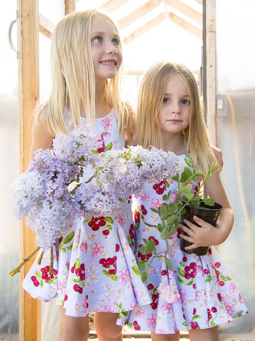 Cut Flowers 0186