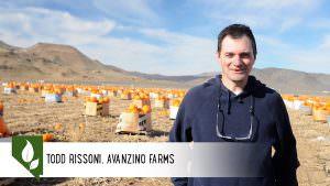 Todd Avanzino Farms