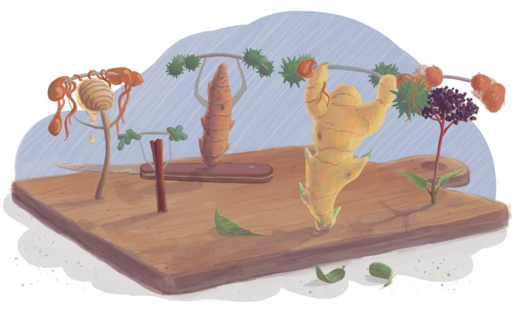 Immune Boost Illustration Final