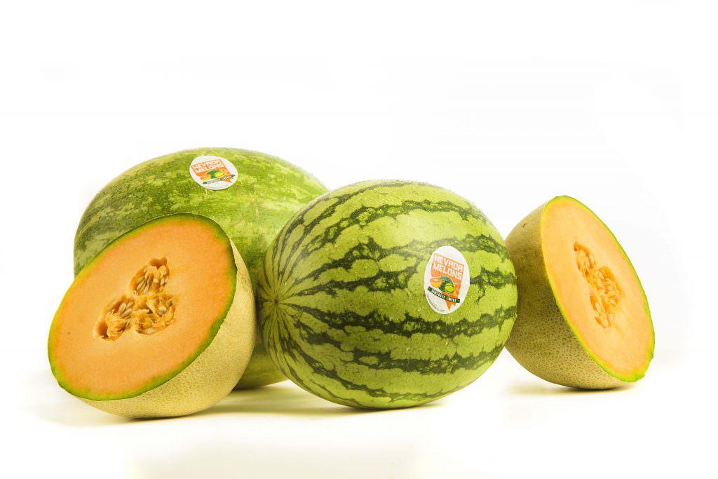 Nevada Melon Wide