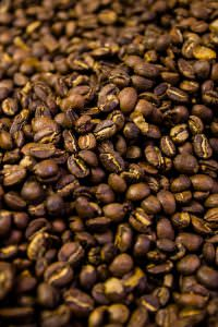 web Star Coffee 1