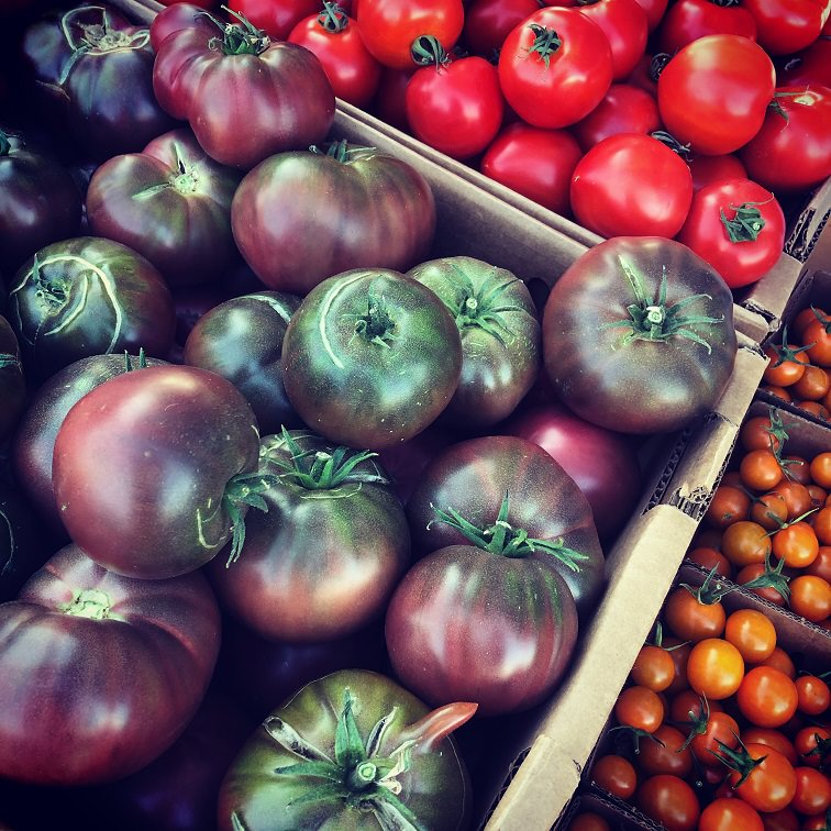 variety of heirloom tomatoes in a basket